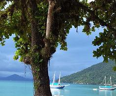 Ilha Anchieta-016.jpg