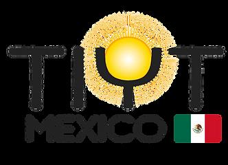 TIYT-Mexico_logo_flag_tm_nowords.png