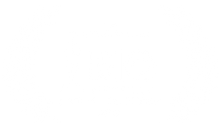 RIOWF20-Official-Best-Documentary-Series.png
