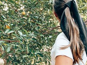 15 hábitos Eco-Friendly súper fáciles de incorporar a tu día a día