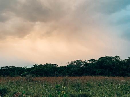 10 documentales que te van a inspirar a cuidar más a la tierra