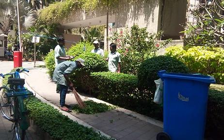garden maintenance2.jpg.png