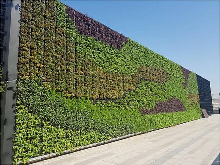 GREEN WALL3.png.jpg