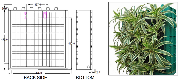 GREEN WALL PRODUCT IMAGE1.png