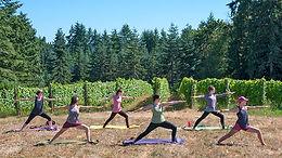 yoga-in-vineyard_WIN17.jpg