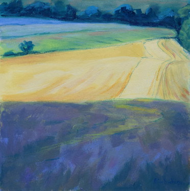 Beyond the Lavender