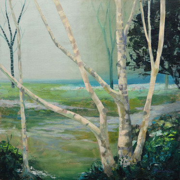 Misty Birches