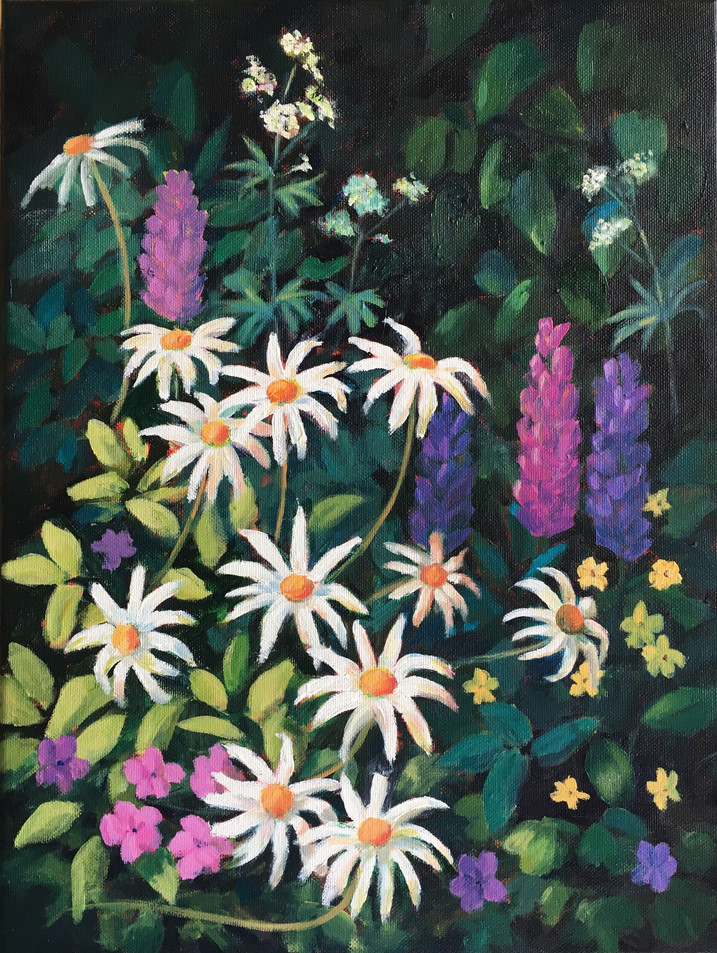 Lupins and Daisies