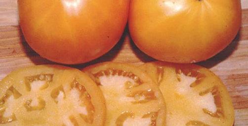 Tomato, Persimmon