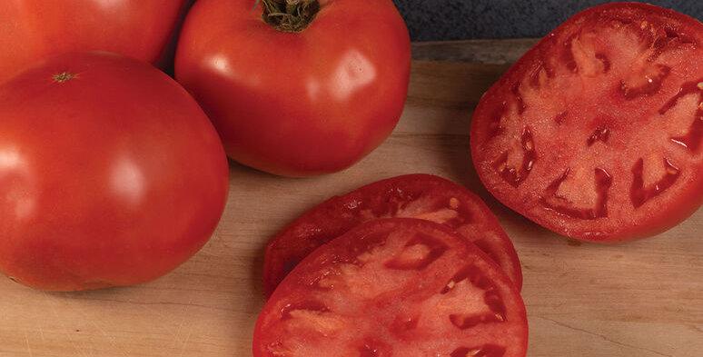 Tomato, Galahad