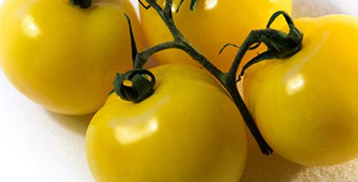 Tomato, Sweet Gold