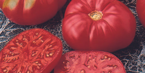 Tomato, Caspian Pink