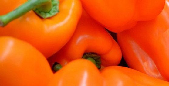 Pepper, ORANGE MARMALADE