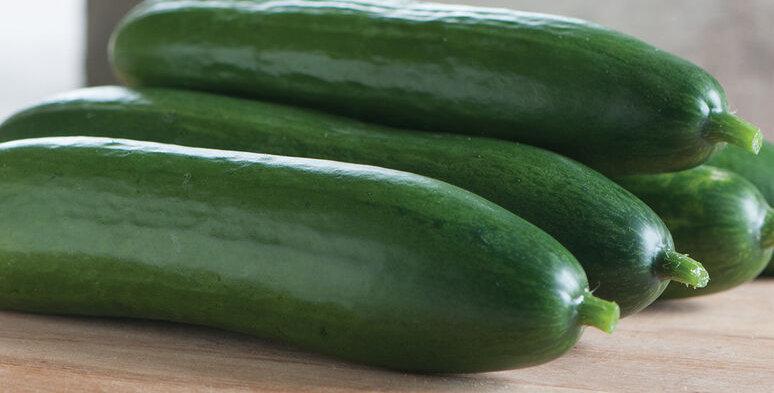 Cucumbers, Diva