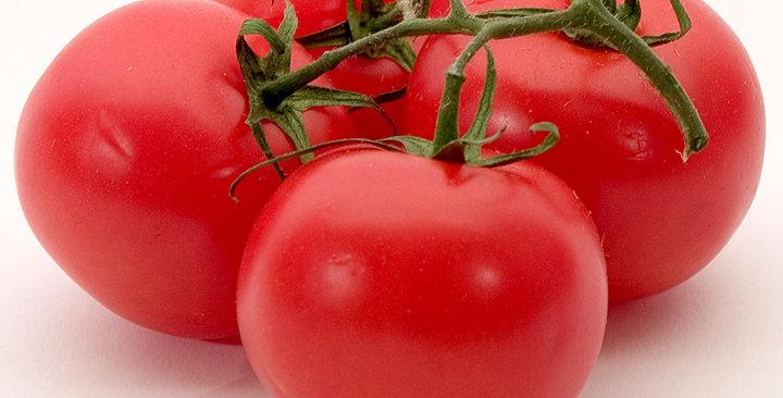 Tomato, Ball's Beefsteak