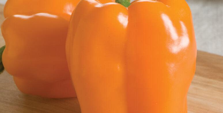 Pepper, GOURMET