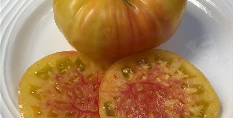 Tomato, Marvel Stripe