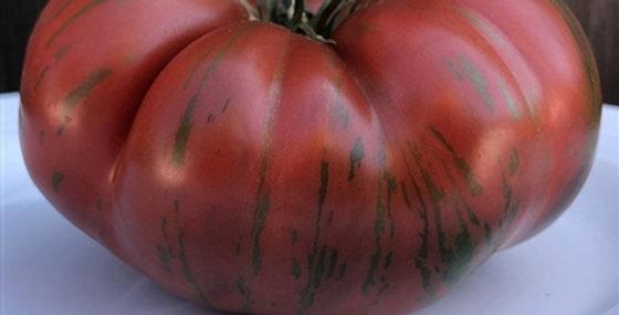 Tomato, Chocolate Stripe