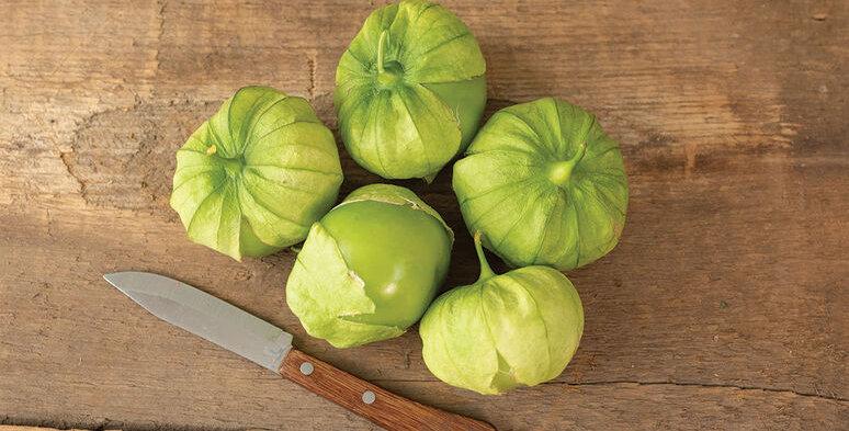 Tomatillo, Super Verde