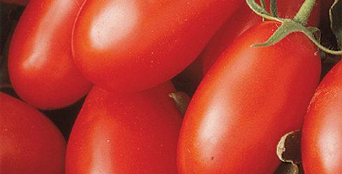 Tomato, La Roma III