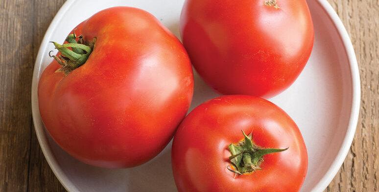 Tomato, Big Beef
