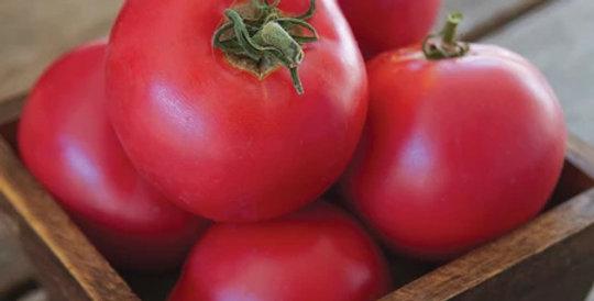 Tomato, Momotaro