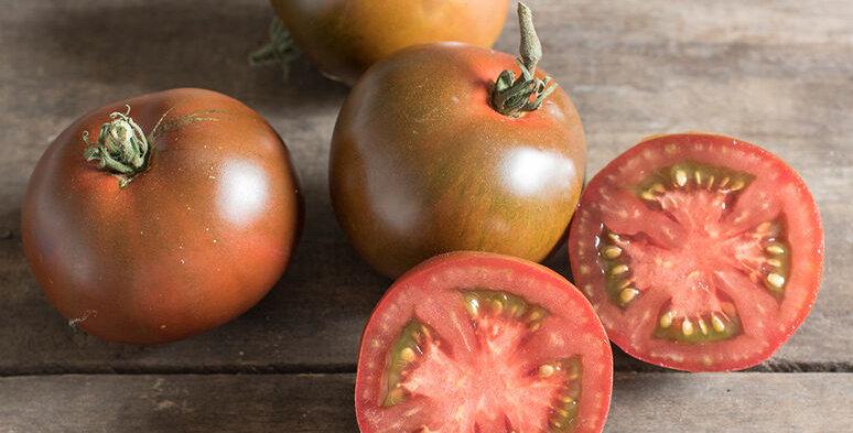 Tomato,  Black Prince