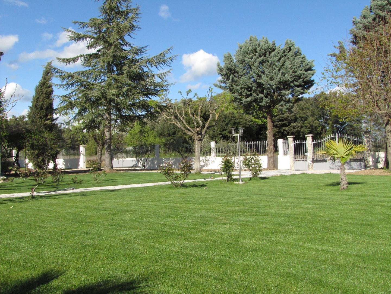 jardin.JPG