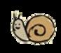 snail transparent.png