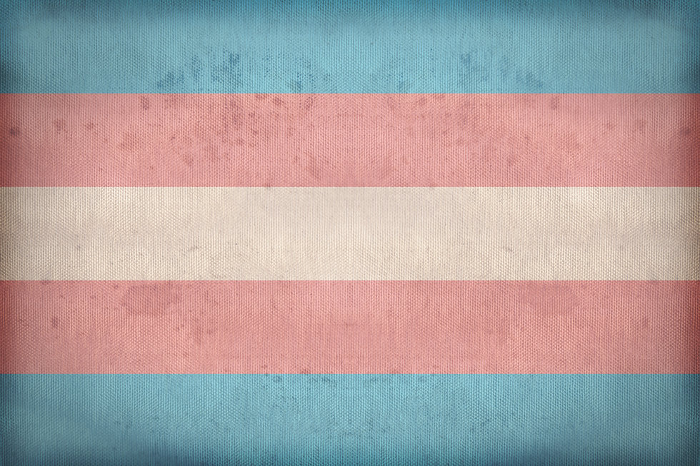 Transgender Pride flag on fabric texture