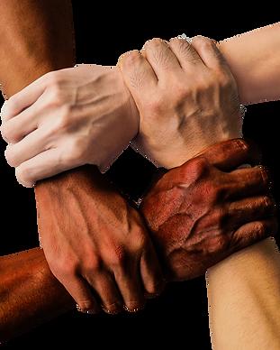 ręce.png