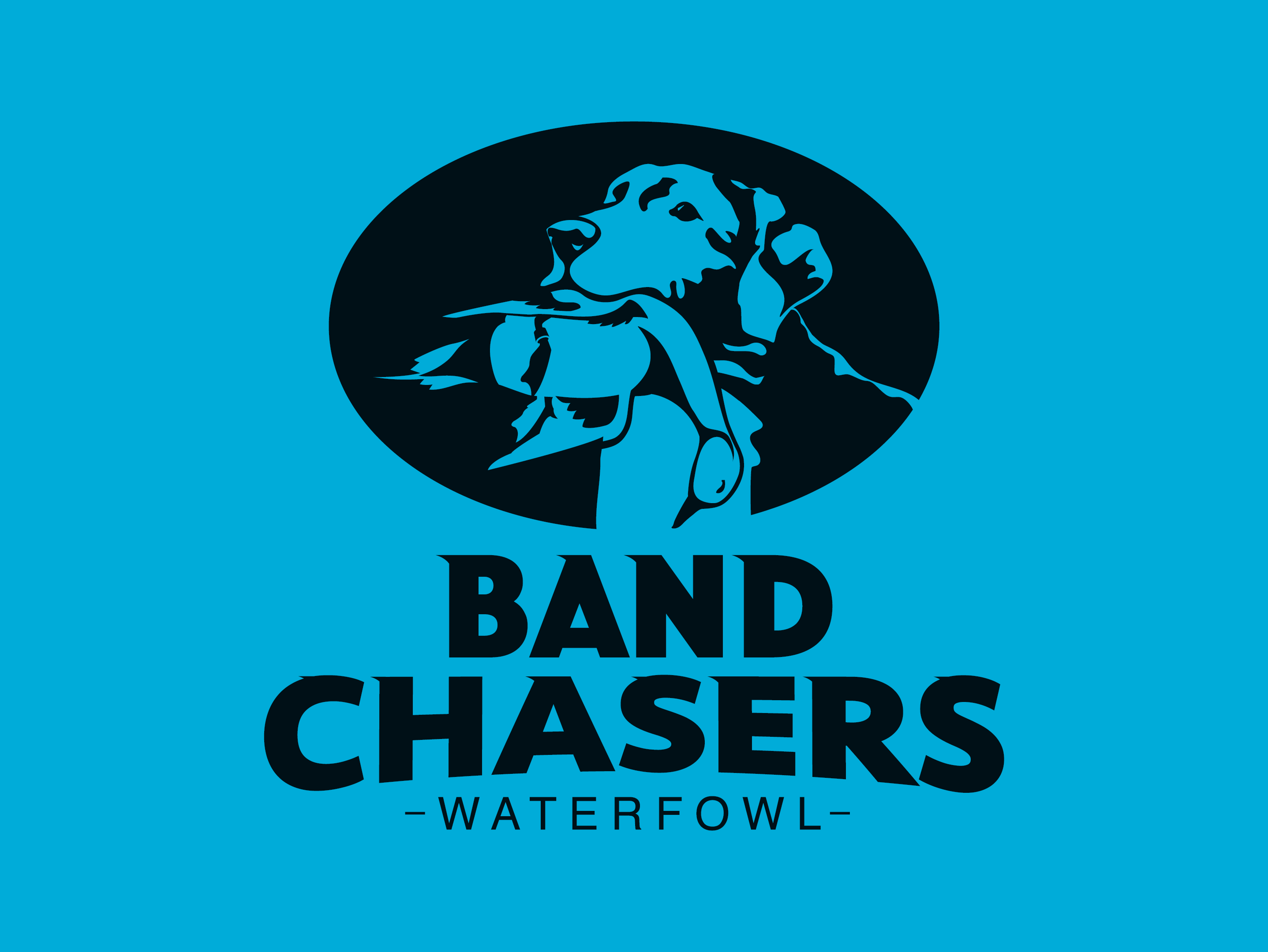 Band Chasers Logo Design