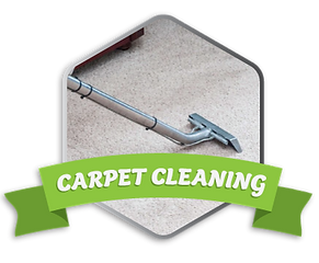 Carpet-Cleaning-Icon.png