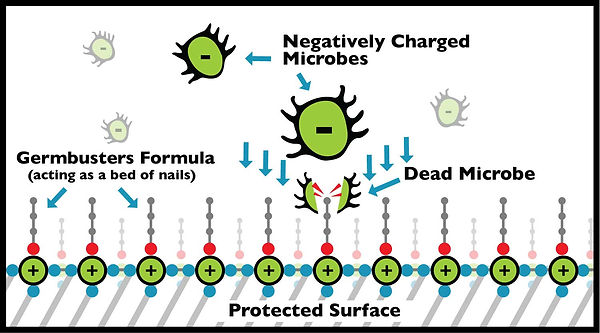 Germbusters-Microbe-Illustration-2020.jp