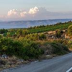 wine-croatia640.jpg
