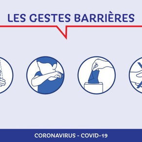 Coronavirus & Animaux 3/6