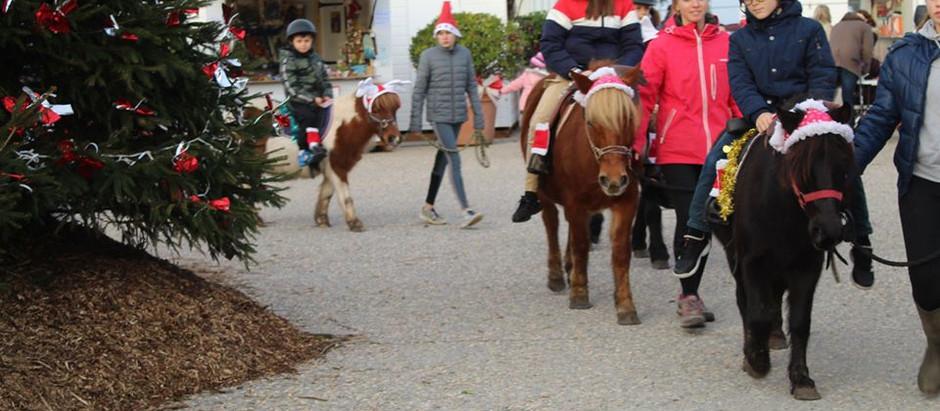 La ville de Saint Gilles parle de nous à son marché de Noël 😁😁😁