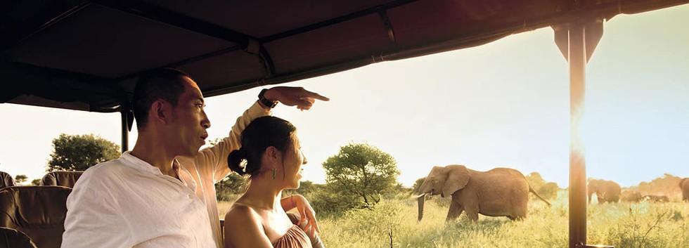 Safári_na_África_do_Sul.jpg