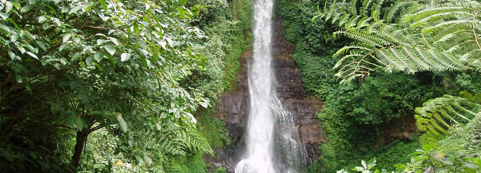 Cachoeira_Gitgit,_Bali,_Indonésia.jpg