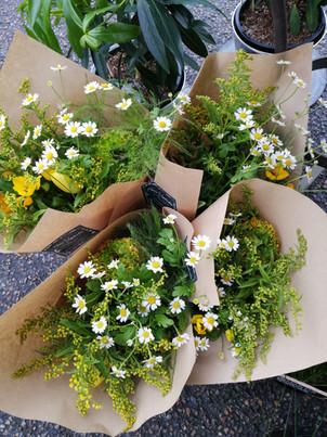 Bouquet du marché | Fleurs Vagabondes.jp