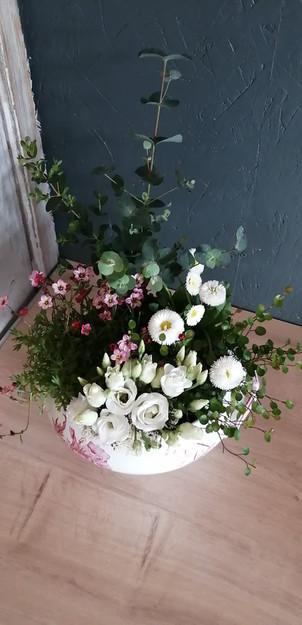 Composition § Fleurs Vagabondes
