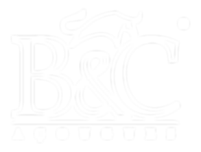 Logo B&C - vasada.png