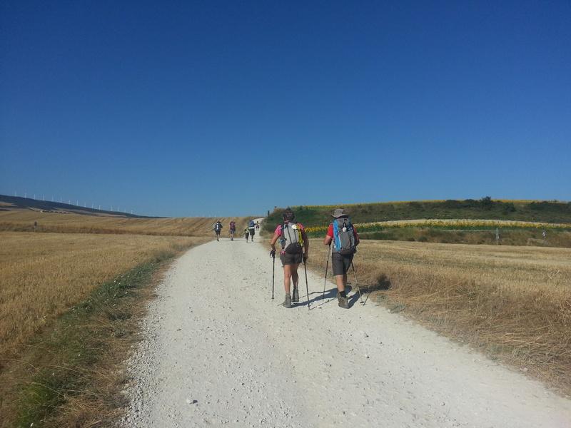 Camino francés