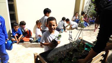Yuny | Projeto Escola Verde