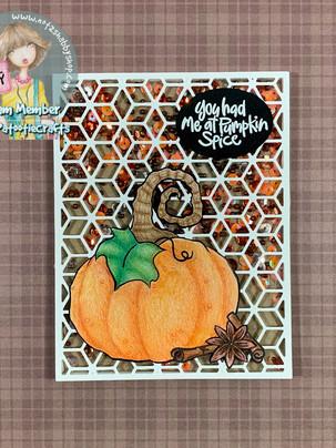 Pumpkin Spice Shaker - Not 2 Shabby
