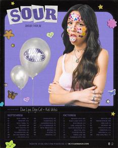 sour-tour1.png