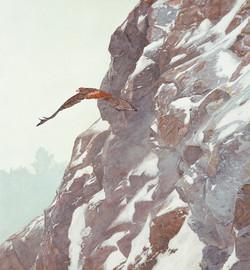 Hunter's Flight (Red Tail Hawk)