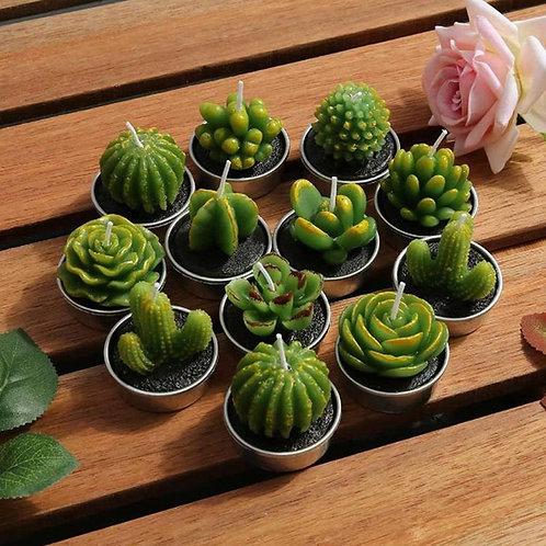 6Pcs 3D Cactus Candle Simulated Plant Set