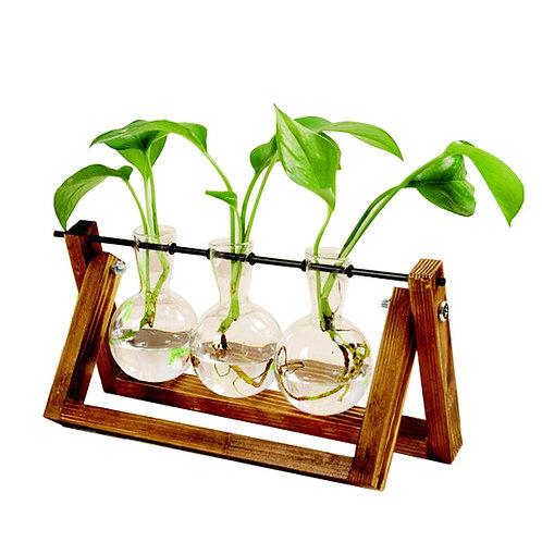 Terrarium Creative Hydroponic Plant Transparent Vase Wooden Frame Plant Bonsai