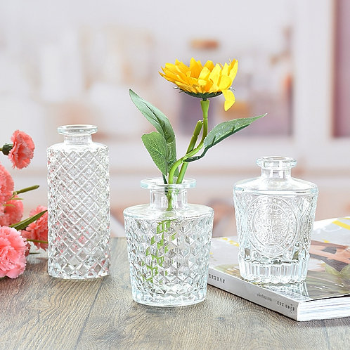 Simple Transparent Glass Small Vase Nordic Decoration Aromatherapy Bottle